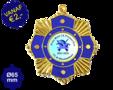 Carnaval Onderscheiding S9190g